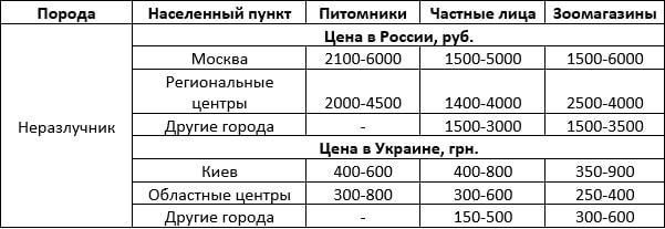 Стоимость попугаев неразлучников
