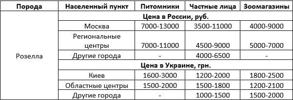 Стоимость попугая розелла