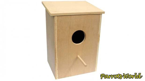 Гнездо для волнистых попугаев: всё про обустройство гнездового домика