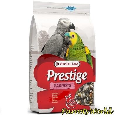 Корма для попугаев: характеристики, состав, рекомендации по выбору